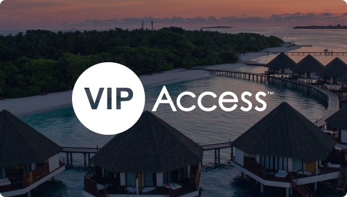 What is VIP Access?
