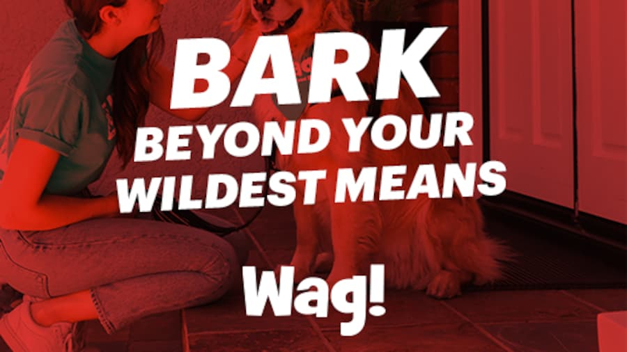 Bark Beyond Your Wildest Means - Wag!